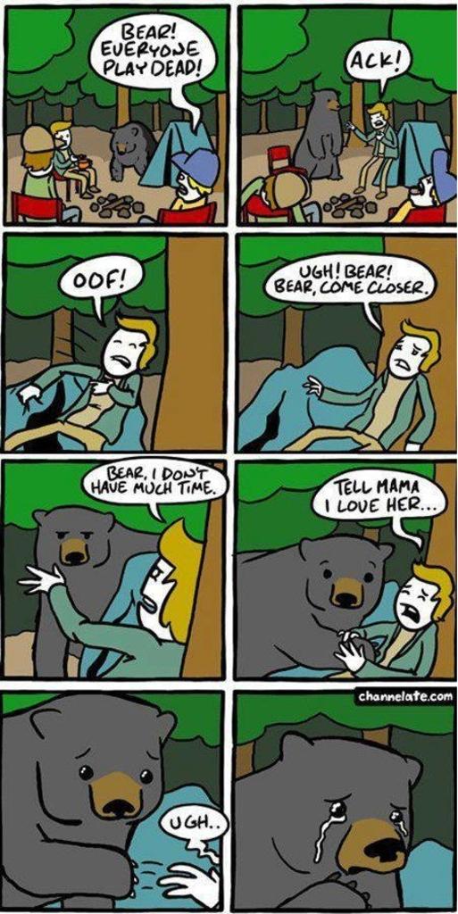 Björn? Bara spela död.