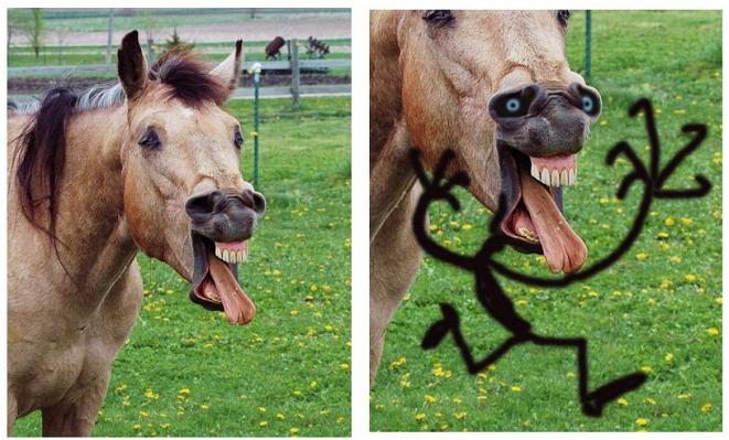Hästgubbe