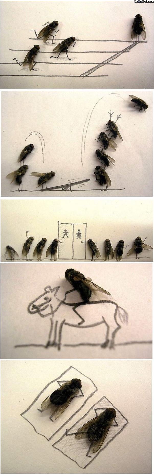 Kreativt med flugor
