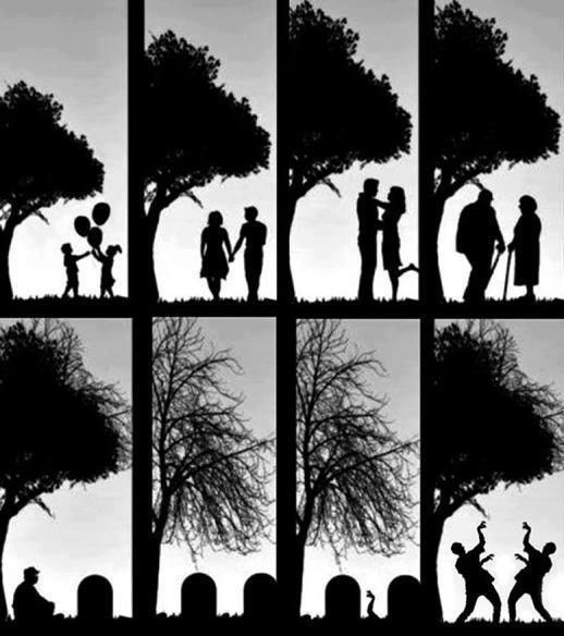 Livets början, och slut och... fortsättning?