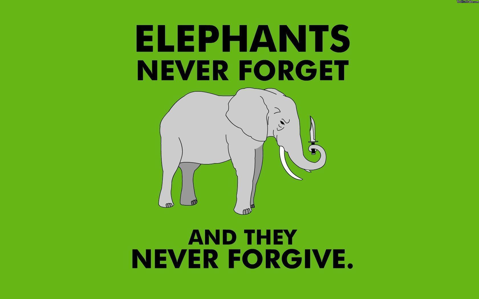 Se upp för hämndsugna elefanter