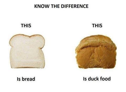 Skillnaden mellan bröd och bröd