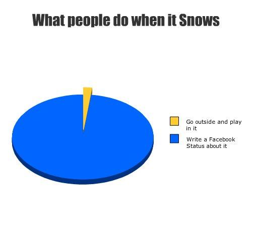 Snöfakta