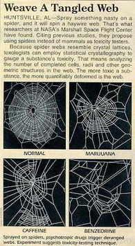 Spindlar på knark