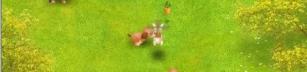 Carrot Track