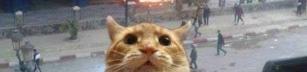 Dagens selfie