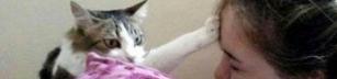 En katts välsignelse