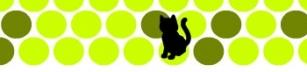 Fånga katten