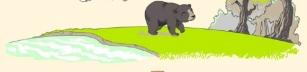 Hur pandor blir till