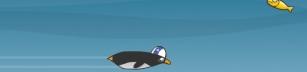 Jetstream Penguin
