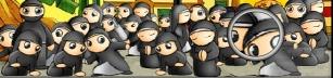 Ninja or Nun?