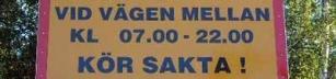 Pst, pedobear, skylten är belägen i Borlänge...