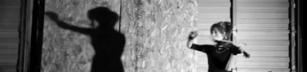 Shadows - Fiol