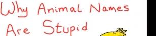 Varför är djurnamn så ologiska?